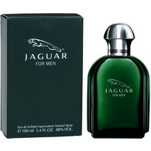 Jaguar for